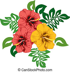Hibiscus flowers with leaves, redand yellow