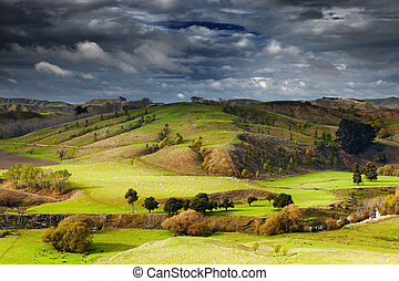 New Zealand landscape, North Island - Landscape with...
