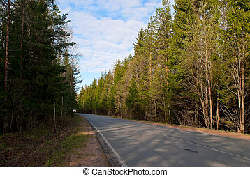 Road in the forest. - Asphalt road in the forest with a...
