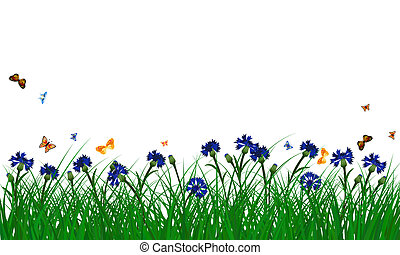 Cornflowers on summer meadow - Meadow color background with...