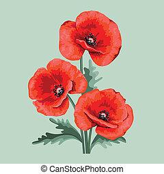 Flower card for invitation. Red poppy.