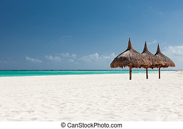 tropical beach with palapa - vacation, beach, sea and...