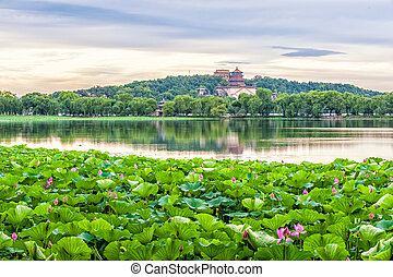 Summer palace - The Summer palace with lotus flower under...