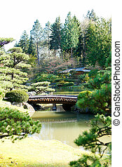 Beautiful green japanese garden during summer time View of...
