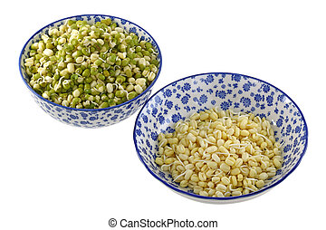 Bowls of Mung Bean Green gram Sprouts with and without green...