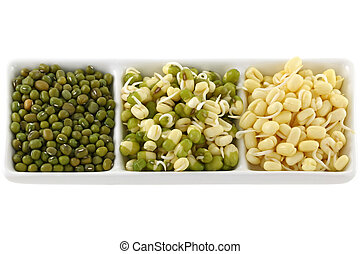 Dried and soaked Mung Bean Green gram sprouts with and...