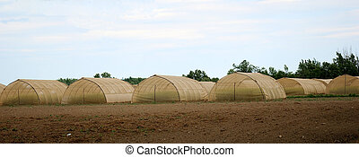 Green house in the country