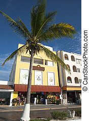 San Miguel Shops - Shops on a main street of resort town San...