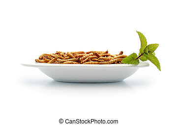 Healthy mealworms on small plate wi - Food of the future....