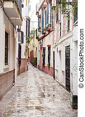 Typical Street in Santa Cruz Neighborhood; Seville; Spain