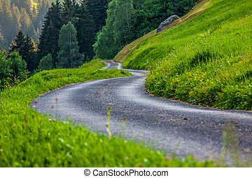 Scenic road through green forest in Switzerland