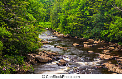 Cascades in the Blackwater River from a bridge at Blackwater...
