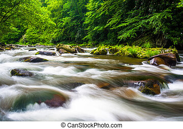 Long exposure of cascades on Raven Fork, near Cherokee,...