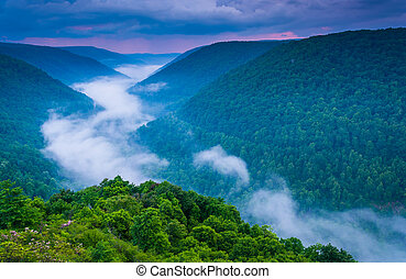 Fog in the Blackwater Canyon at sunset, seen from Lindy...