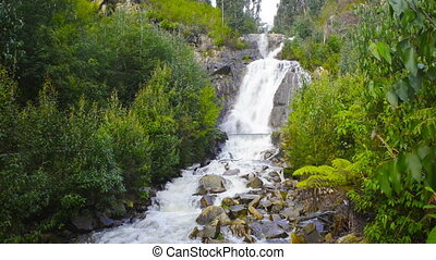 Steavenson Falls on the Steavenson River in Marysville,...