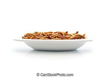 Healthy mealworms on small plate - Food of the future....