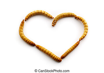 Love mealworms - Some people just love mealworms. Healthy...