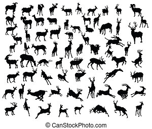 deers collection silhouettes - vector