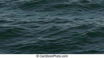 Flying over the ocean, waves - Different ocean waves in 4K
