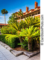 Small palm trees and building at Flagler College, in St...