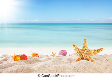 estate, spiaggia, fondo