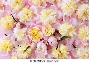 colorful pink and yellow flowers background