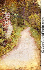 Wooded Path on Grunge Background