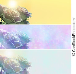 Three misty rose banners - Three different colored website...