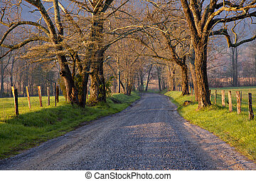 Country Road Sunrise - Beautiful un-paved country road lined...