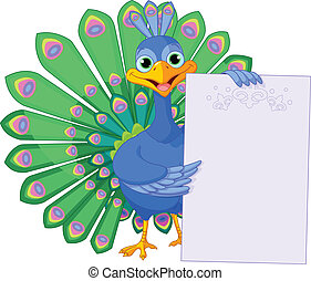 Peacock holding placard - Illustration of peacock holds a...