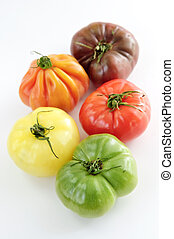 Heirloom tomatoes - Multi colored heirloom tomatoes isolated...