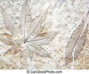 Leaf cement - marks of leaf on the concrete pavement.