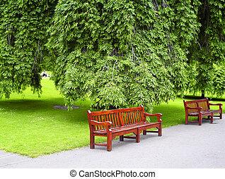 verde, parque