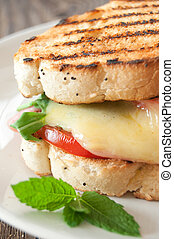 Grilled cheese melt - Grilled sandwich close up with melted...