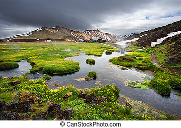 Small river and fresh blooming flowers near thermal springs...
