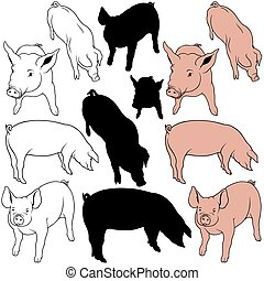 Pig Set 02 - colored hand drawn illustration