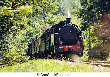The tourist train from Anduze in the countryside arriving at...