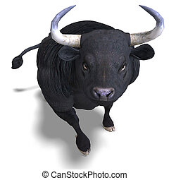 black bull is ready for the fight - dangerous bull with...