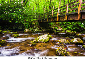Cascades and walking bridge over the Oconaluftee River, at...
