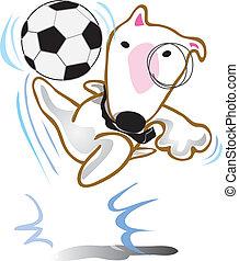 Dog Bull Terrier play soccer