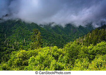 Low clouds over mountains, seen from Newfound Gap Road in...