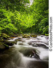 Cascades in the Oconaluftee River, at Great Smoky Mountains...