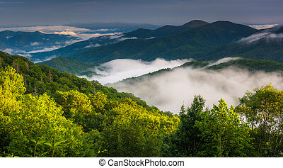 Low clouds in a valley, seen from Newfound Gap Road in Great...
