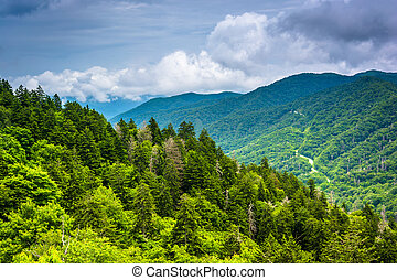 Dramatic view of the Appalachian Mountains from Newfound Gap...