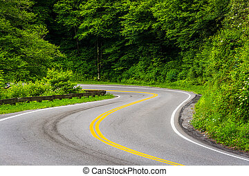 Newfound Gap Road at Great Smoky Mountains National Park,...