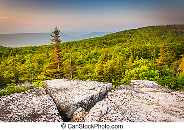Morning view from Bear Rocks Preserve, in Dolly Sods...