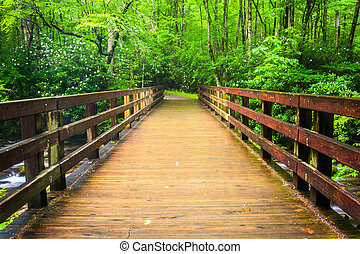 Walking bridge over the Oconaluftee River, at Great Smoky...