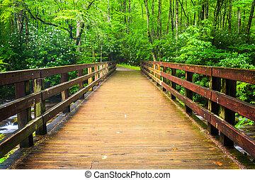 Walking bridge over the Oconaluftee River, at Great Smoky...