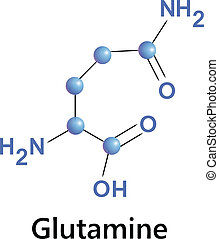 glutamine - Vector illustration, the chemical formula of...