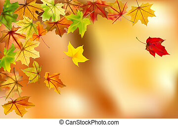 Autumn background - Maple autumn leaves falling down on...